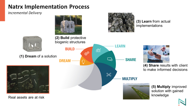Natrx Implementation Process